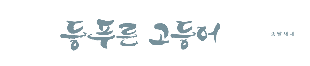 종달새체(기본라이선스)